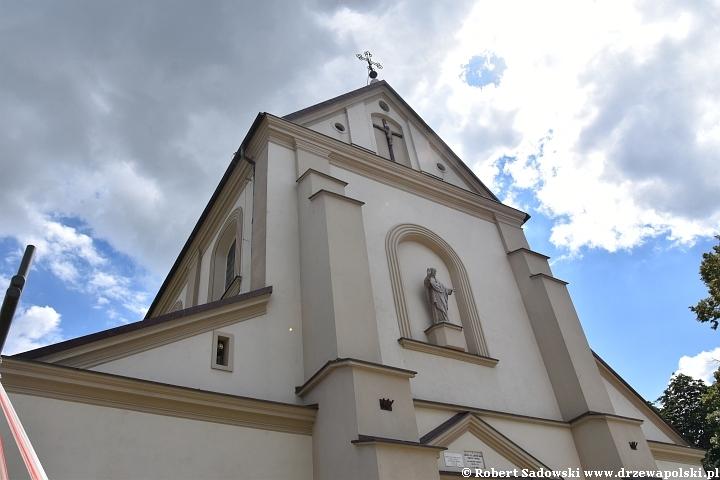 Kościół św. Andrzeja Apostoła w Łęczycy