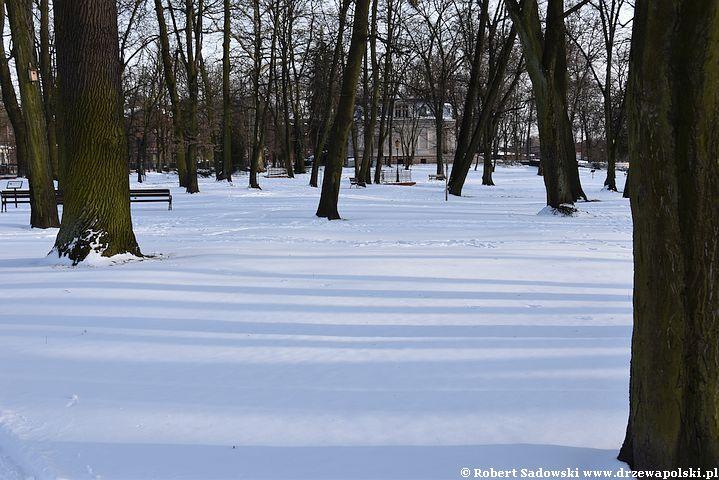 Atak zimy w połowie marca