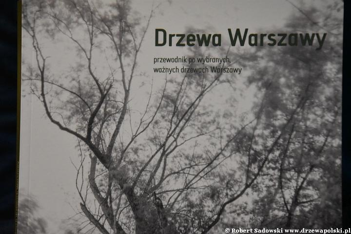 Drzewa Warszawy - przewodnik