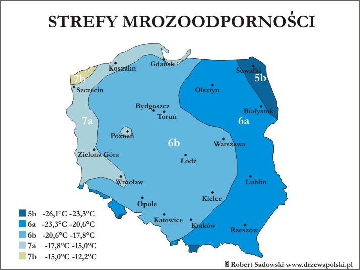 Strefy mrozoodporności w Polsce