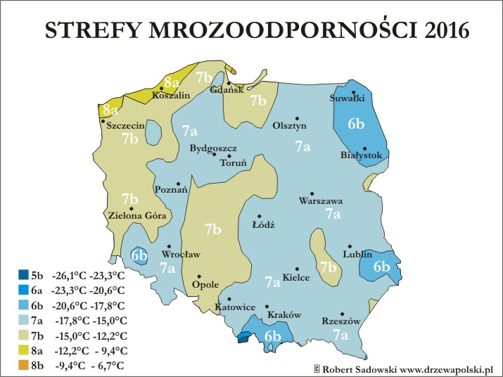 Nowe strefy mrozoodporności w Polsce