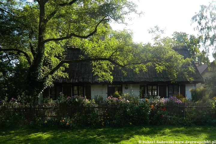 Wiejska chata z ogródkiem
